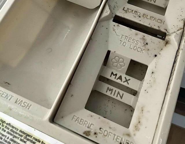 cómo quitar el molde de la bandeja de la lavadora