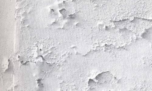 encalado de yeso de pared húmeda