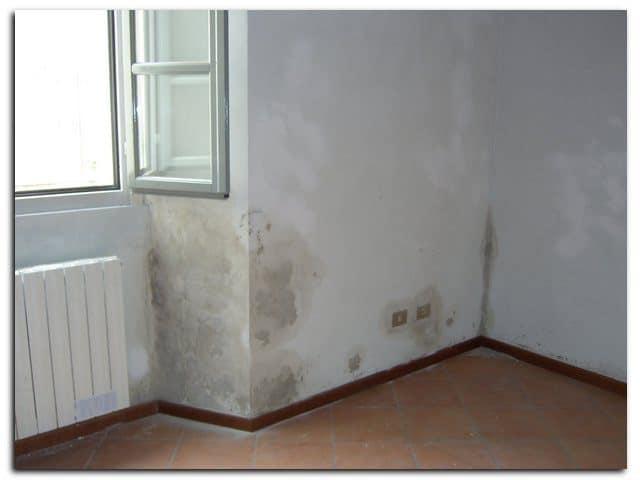humedad y moho en paredes y cajones